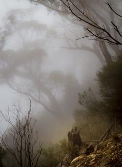 Склон в тумане