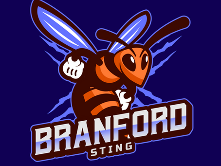 The Dream League welcomes the Branford Sting!