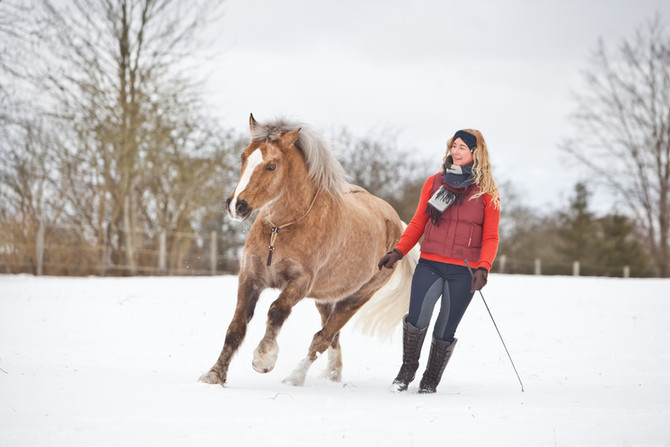 Schneeshooting mit Mardi