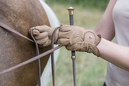 Andrea mit Pferden-39.JPG