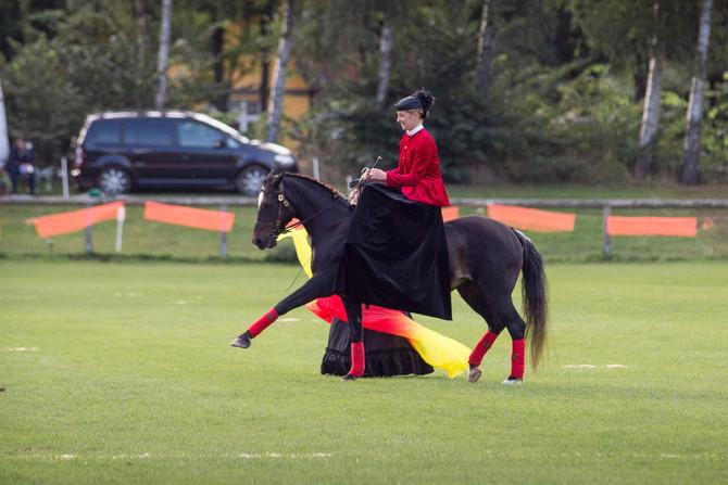 Landesbreitensportturnier Bad Segeberg am 19.und 20. August