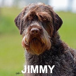 Jimmy%20front_edited_edited.jpg