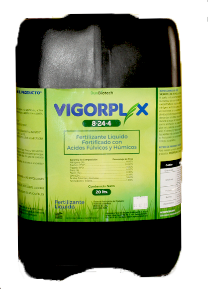 VIGORPLEX 8-24-0 20 LT