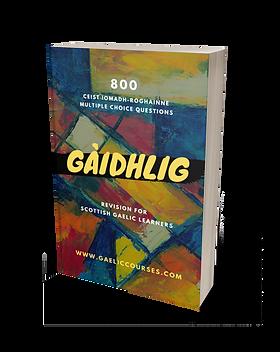 Gaelic Revision Book