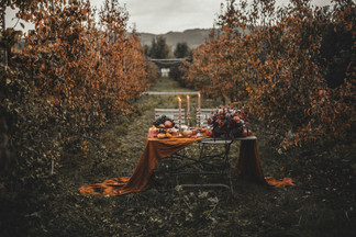 Celine_Soulfulstories_Autumn_Wedding-84.jpg
