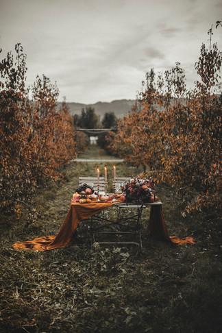 Celine_Soulfulstories_Autumn_Wedding-85.jpg