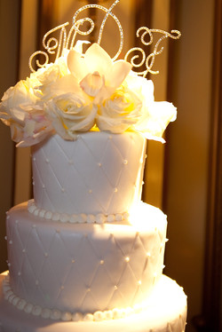 Professional Wedding Pictures 1103.jpg
