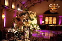 Professional Wedding Pictures 971.jpg