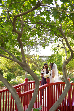 Professional Wedding Pictures 151.jpg