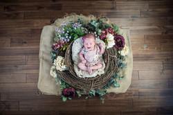 Mila Newborn-588