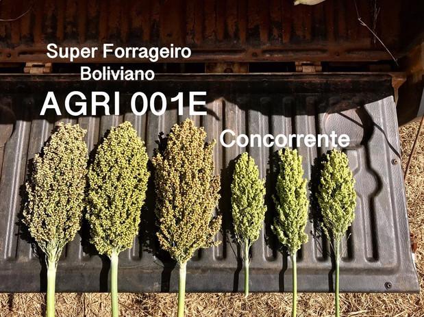 AGRI 001E