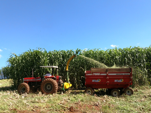 AGRI 002E
