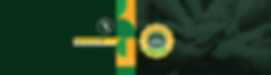 banner equipe.png