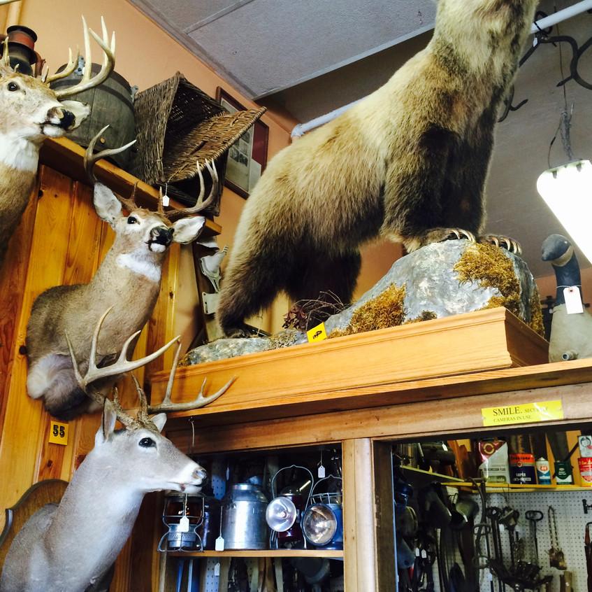 Wallace, Idaho
