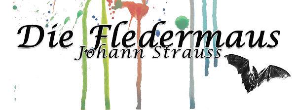 Fledermaus facebook banner (1).jpg