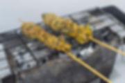 Zahara.jpg