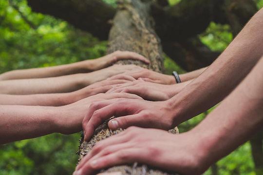 ecosostenibilita-hands-1.jpg