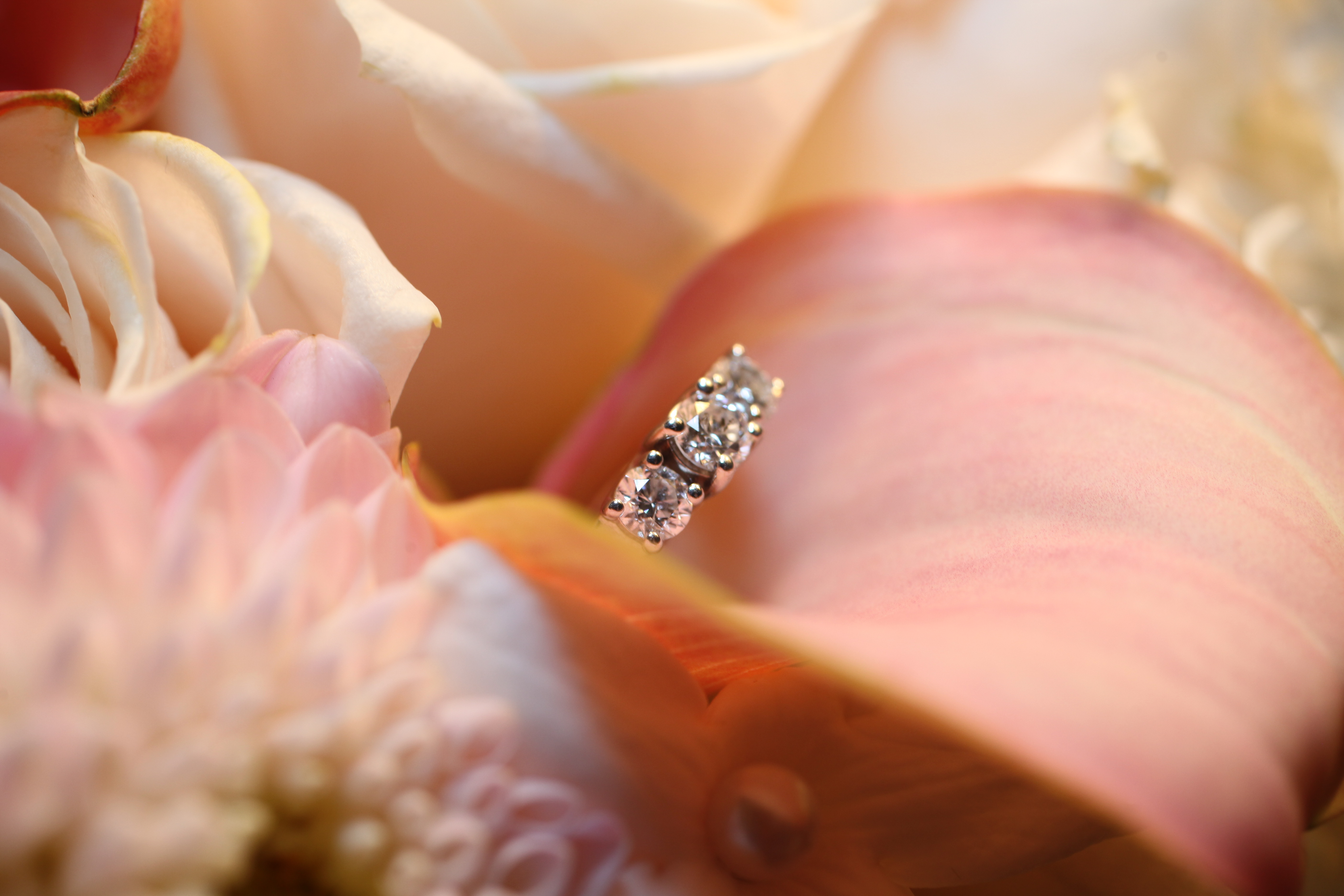 Diamond in a flower