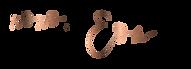 DD_signature(web).png
