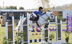 EE Show Stable Pony Jumpers