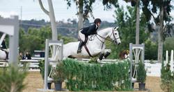 EE_equitation_banner