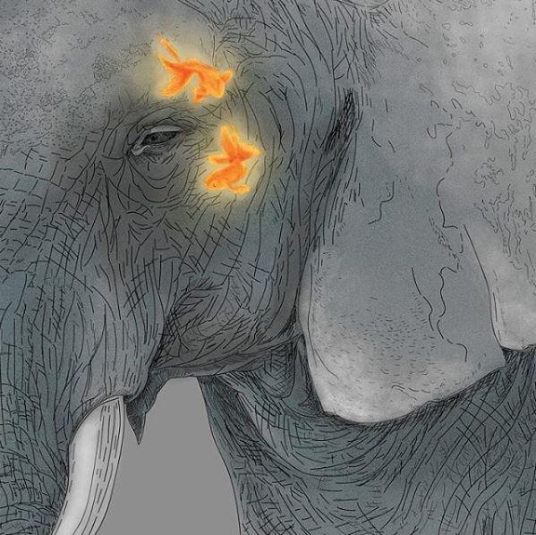 Elephant dream