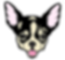 chi dog head_edited-1.png