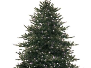 Møller Bil bidrar til jul!