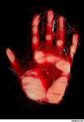 zoom-sangue-60.jpg