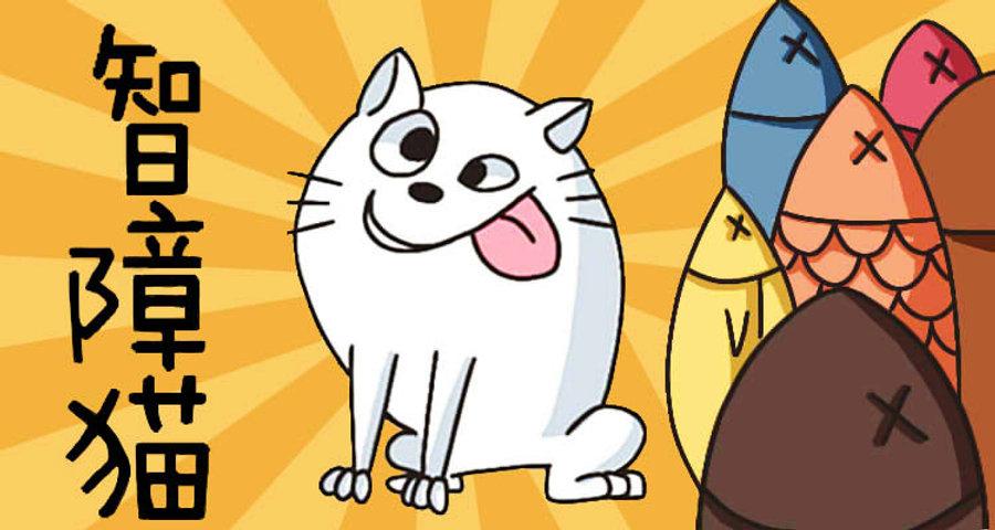 智障猫详情页横幅最终_副本.jpg