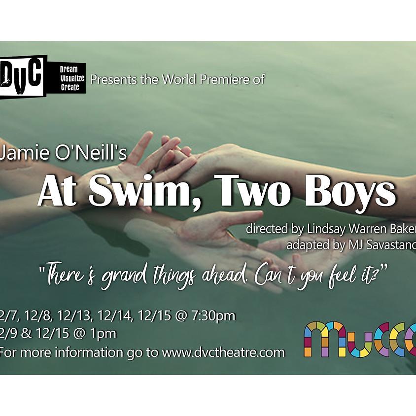 DVC presents: Jamie O'Neill's At Swim, Two Boys