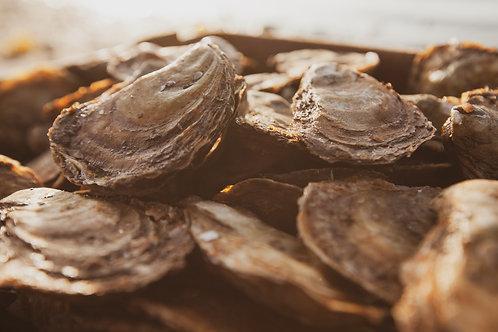 100 huîtres cocktails - La St-Simon
