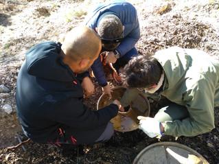 La empresa La Gergaleña colabora con la asociación AlVelAl en la restauración del paisaje