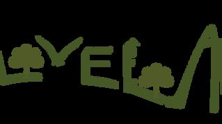 AlVelAl saca a la licitación la creación de una tienda online