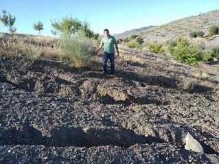 Beneficios del manejo del suelo tras las últimas tormentas