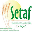 logotipo  SETAF.jpg