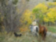 trail ride montana