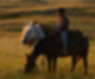 montana trail rides, overnight pack trips, livingston trail rides