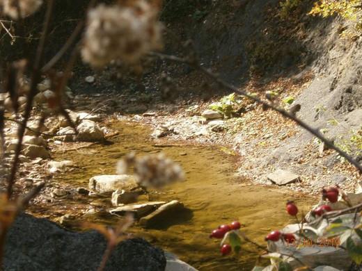 долина реки Жане путь к дольменам.jpg
