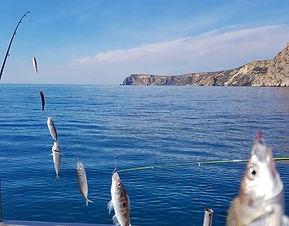 На рыбалку в Геленджик