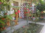 Гостевой дом «Шамбала» 5.jpg