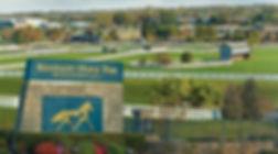 KENTUCKY HORSE PARK.jpg