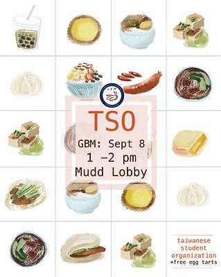TSO flyer.jpg