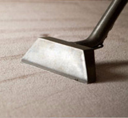 Carpet Cleaning PIC_edited