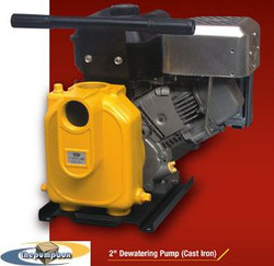 AMT Cast Iron Transfer Pumps