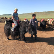 Riding a yak in Mongolia