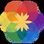 WSF Logo.png