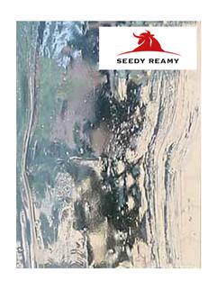 Seedy Reamy
