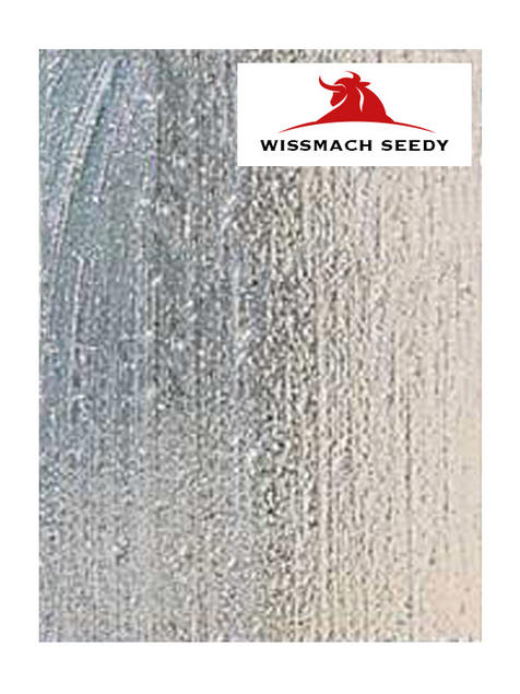 Wissmach Seedy