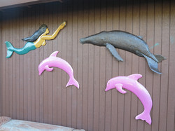 Mermaid, whale and pink dolphins